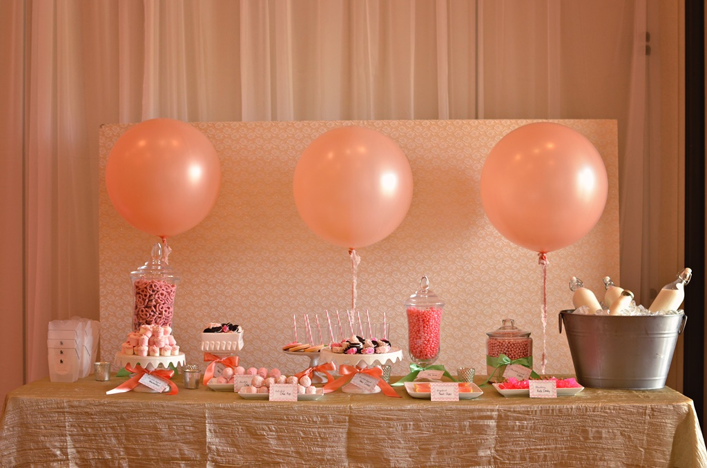 baby shower welcome party with kismis ink photography chic